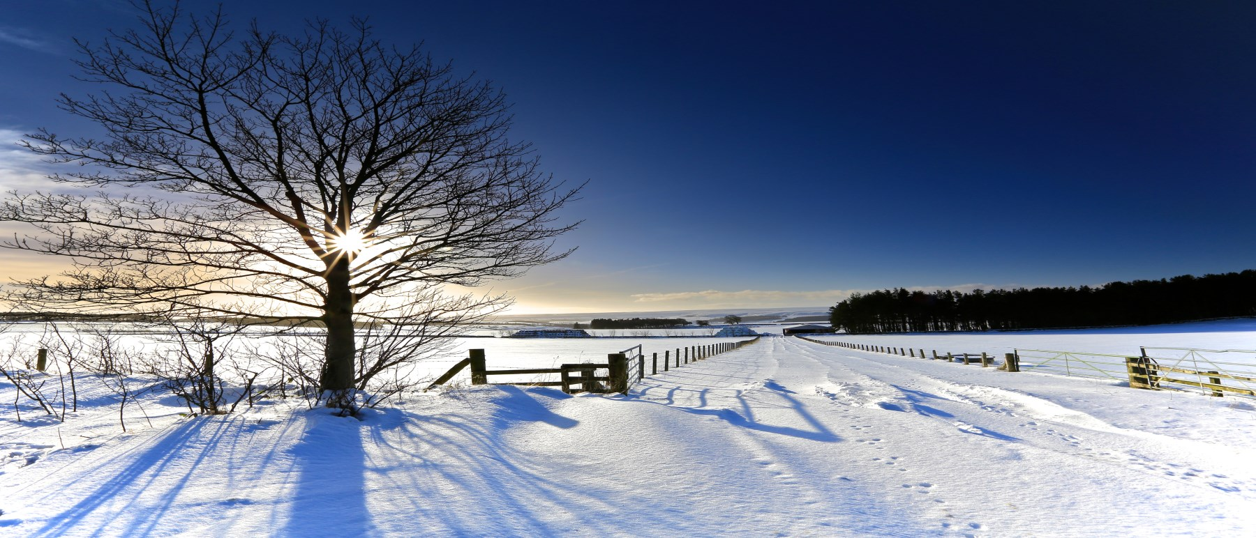 Image of winter scene with sun shining